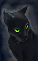 Hollyleaf by maraaaa67