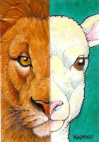 ACEO Lion and Lamb by MandarinMoon