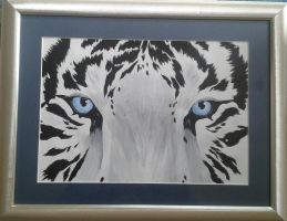 white tiger face by LucieWalton