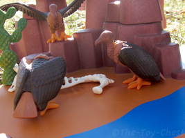 Playmobil Canyon - Vulture Dinner by The-Toy-Chest