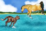 Cat and Horse water play by Kysan
