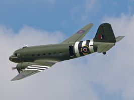 Dakota - Old Warden by davepphotographer