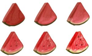 watermelon - step by step by ryky