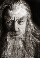 Gandalf the Grey by Jon-Snow