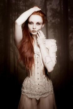 Sheer Overbust corset by v-couture-boutique