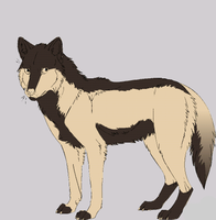 wolf adoptable  for sell -OPEN by HunterDarkWolf