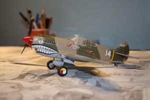 P-40 Warhawk by teardrop-sidemarker