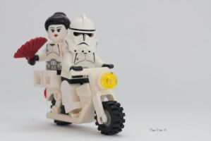 Mamasantrooper by solcarlusmd
