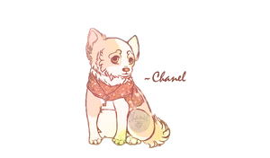 Chanel by KateLuckyness