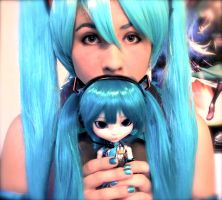 Miku and Pullip by Timid-Appleton