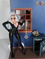 Touched up Black Cat figure by Unicron9