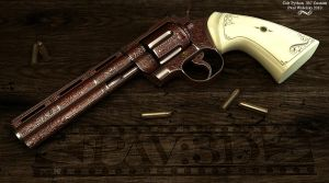 Colt Python Custom Main View by jimficker