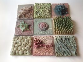 Echinoidea  tiles by m0onwitch