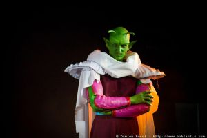 piccolo ssrr by Heartofdevil-cosplay