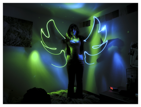 Illumination: Wings by exfish