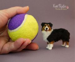 Miniature Australian Shepherd sculpture by Pajutee
