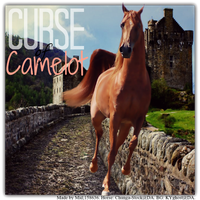 Curse Of Camelot by Maarvel