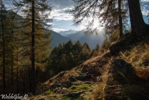 Val Chiavenna by WelshGlue