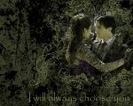 Delena Choice Wallpaper by Mimozami