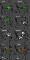TZW Markings by MysteryKittenThe1st