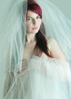 Foxxy Wedding Veil by joicarey