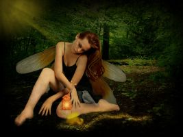 ...out of pixie dust.... by imthinkingoutloud
