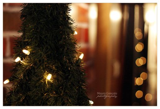 Happy Lights 01 by mauro-goncalo