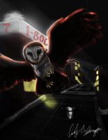 Owl in the City by StitchParadox