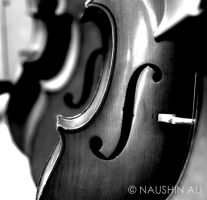 The Cello by nishiie-pie