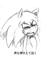 sonic cry 21lower he's voice by bbpopococo