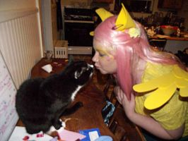 Fluttershy loves the animals by phasingirl