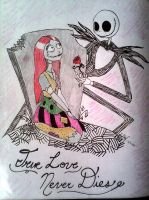 Jack and Sally by LogikalReasonning