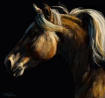 Horse Speed Painting by ChayaA