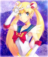 Sailor Moon by LazyTurtle