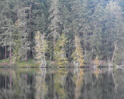 Stock: Lake Reflection by Stock-By-Michelle