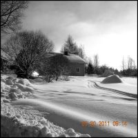 Black and white winter by TearOfDeceit