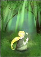 Forest light by o0NeonCola0o