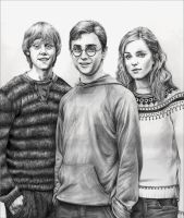 HP-Harry,Ron,Hermione by leiaskywalker83