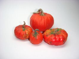 Red Dollhouse Pumpkins by Ethereal-Beings
