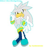 Silver the hedgehog by tacofacedrawer