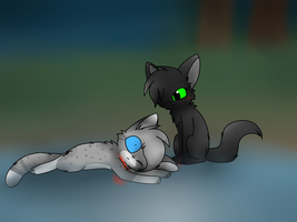 Ashfur's Dead (re-drawn) by MillyTheTigerKitten