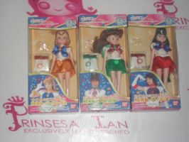 PGSM MINI DOLL COLLECTION by prinsesaian