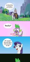 About Spike and Rarity by doubleWbrothers
