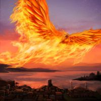Sunbound Phoenix by pinkhavok