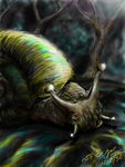 Number 1 Snail in Rainforest by sw-eden