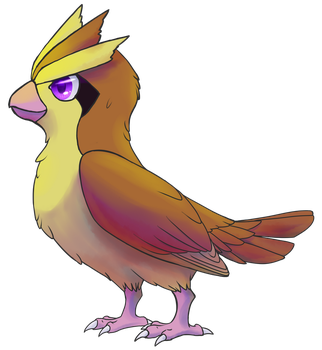 Pidgey by Apricotil