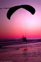 Flying into sunset by TlCphotography730