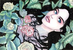 rose in the water by Sabeths-Reality
