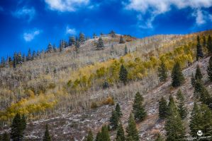 Autumn Colors and First Snow HDR by mjohanson