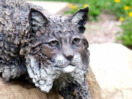 Bobcat Face 2 by MorganCG